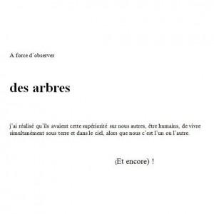 texte arbres - Pierre-Marie Ziegler